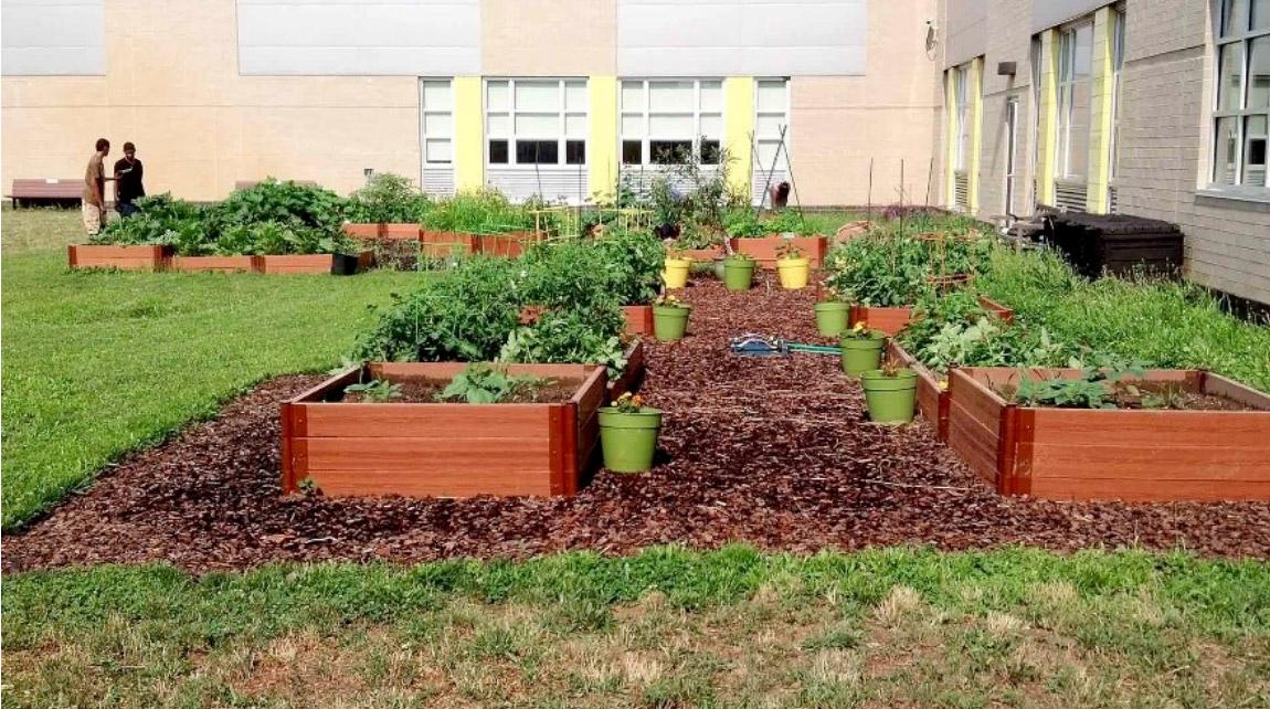 Class garden